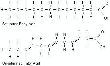saturated fat pharmpedros blog