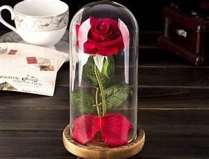 Rose Eternelle Sous Cloche : rose ternelle c 39 est quoi comment l 39 int grer dans ~ Farleysfitness.com Idées de Décoration