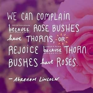 Life is a balan... Lincoln Barnett Quotes