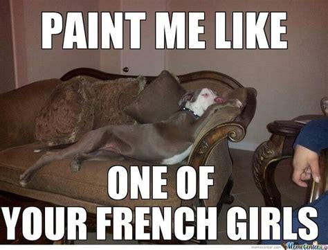 Pit Bull Memes - 10 funny pit bull memes petanimalguide com