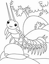 Centipede Coloring Millepiedi Kleurplaat Stampare Duizendpoot Bimbi Ramp Walk Colorare Gratis Template Disegni Trying Bug Printable Insect Insects Bestcoloringpages Halloween sketch template
