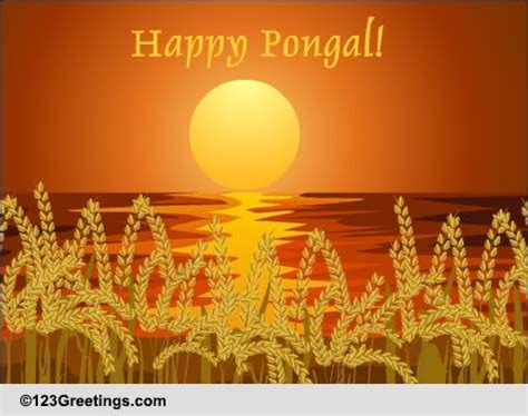 pongalo pongal pongal ecards greeting cards