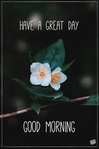 Fresh Inspirational Good Morning Quotes for the Day | Get on the Right Track - Part 4