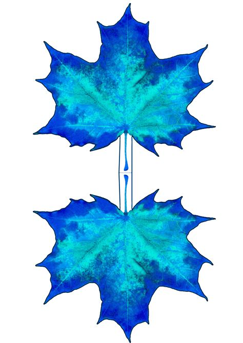 blue maple leaf decoration rooftop post printables