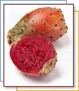 Cactus - Edible Prickly Pear - Food Reference
