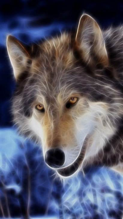 Iphone Wolf Actic Wallpapers Imgs App
