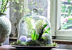 Glasglocke Mit Teller : glasglocke von mirabeau bild 3 living at home ~ Orissabook.com Haus und Dekorationen