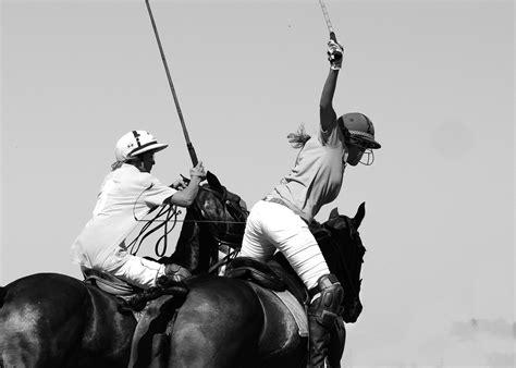 polo horse ball game riding mallet sport equestrian horses rider sports play stick polocrosse games horseback helmet mountbatten animal monochrome
