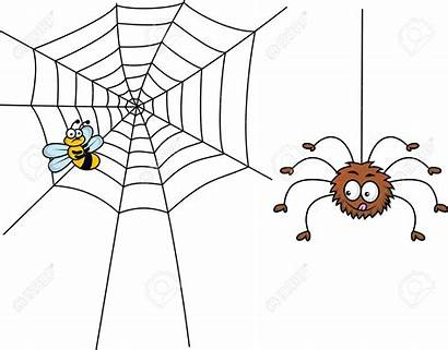 Spider Cartoon Spinne Fly Clipart Lunch Flue