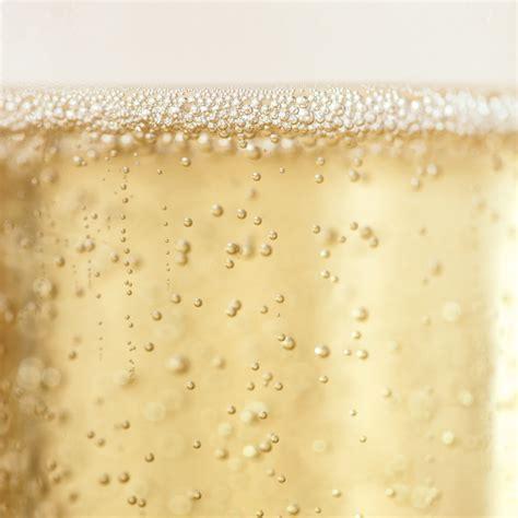 Champagne 101   Martha Stewart Weddings