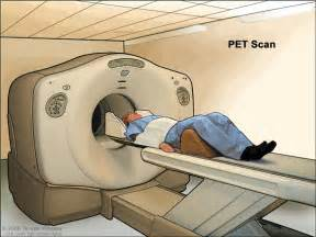 define cat scan definition of pet scan nci dictionary of cancer terms