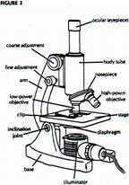 High quality images for microscope diagram 1920x1080 wallpaper hd wallpapers microscope diagram ccuart Images