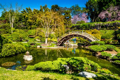 The Huntington Botanical Gardens by Huntington Library Collections Botanical Gardens