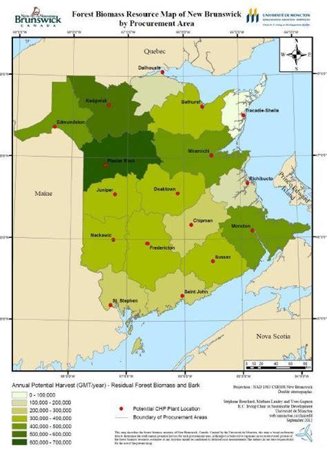 report biomass chp  potential   brunswick