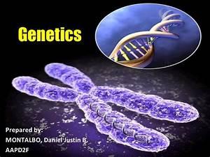 Taboo Genetics Lec Ppt