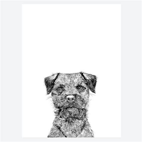 border terrier print  ros shiers notonthehighstreetcom