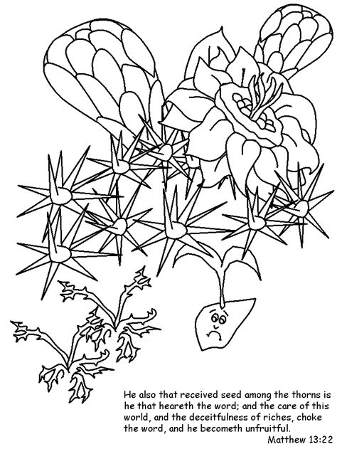 jesus parablesower bible coloring pages coloring book