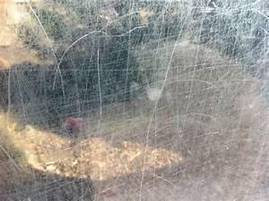 Kratzer Auf Glas Entfernen : kratzer glas entfernen kann ich selbst kratzer im glas entfernen youtube mehrere kratzer im ~ A.2002-acura-tl-radio.info Haus und Dekorationen