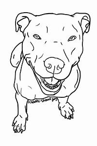 Free to use pit bull lineart! ^-^ PLEASE READ THE RULES ...