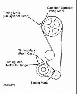 How To Set The Timing Correctly  I Replace The Head I Thought I
