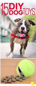 25 best ideas about homemade dog toys on pinterest dog With expensive dog toys
