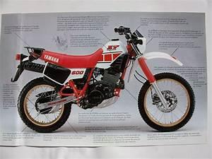Yamaha Xt 600 Occasion : motorrad occasion kaufen yamaha xt 600 47n sciaroni motoservice minusio id 3497961 zeile 710 ~ Medecine-chirurgie-esthetiques.com Avis de Voitures