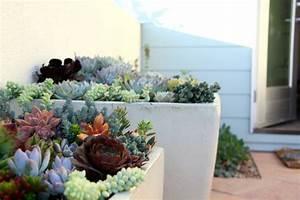 deco plante pour terrasse With attractive idee de decoration de jardin exterieur 10 idee deco salon ancien et moderne