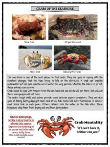 crab facts and worksheets for 594 | Crabs Worksheet 2 225x300