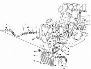 Bv 1012  Wiring Diagram 2002 Ducati Download Diagram
