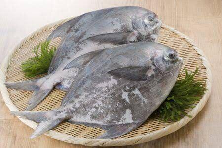 Saya akhirnya mencoba untuk masak ayam bakar madu. Resep Ikan Bawal Bakar Madu, Aroma Bumbu Bakarnya Bikin ...