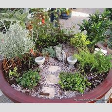 162 Best Images About Mini Container Gardens On Pinterest