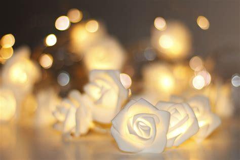 white rose battery fairy lights the fairy light shop
