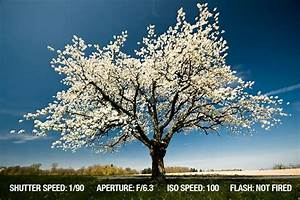 Landscape Photography Tips | ExposureGuide.com