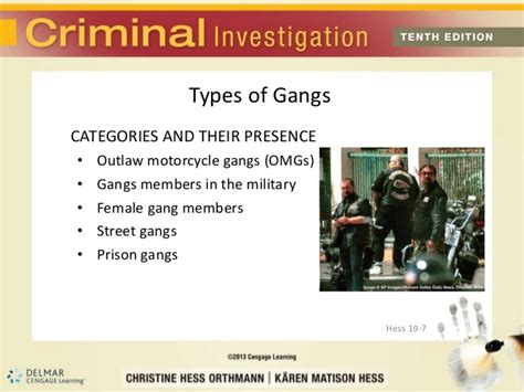 Criminal Activities Of Gangs And Other