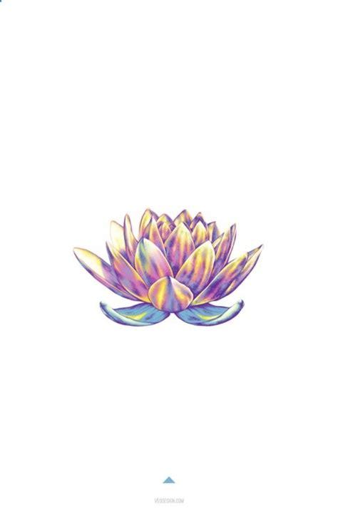 lotus flower colors minimalistic design lotus flower in color zesty