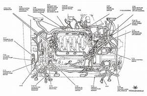 2002 Ford Focus Zetec Engine Diagram  U2022 Wiring Diagram For Free
