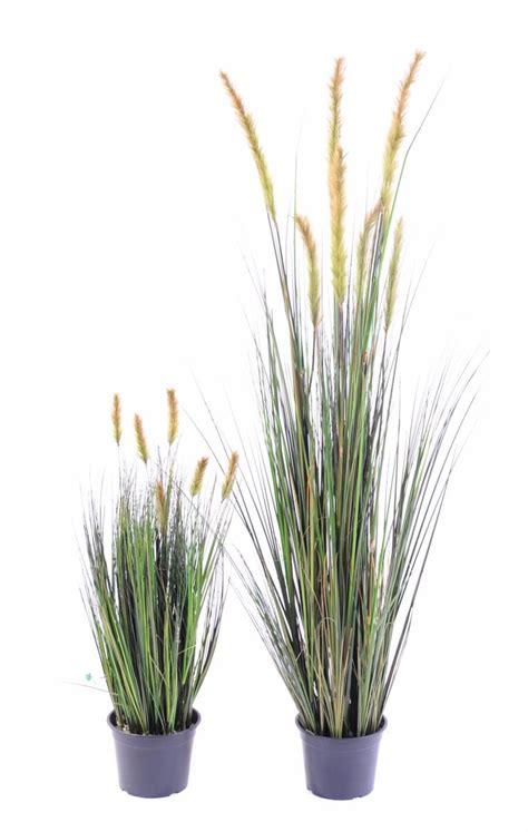 plante artificielle gramin 233 e vulpin des chs foxtail en