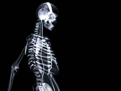 Skeleton Wallpapers 3d Dj