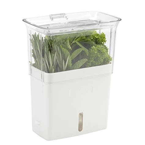 Cole & Mason Fresh Herb Keeper, Container, Clear Import