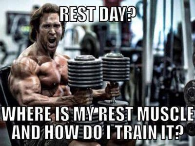 Rest Day Meme - russian twist workout deload week cardio wild card boxing gym hollywood best supplement