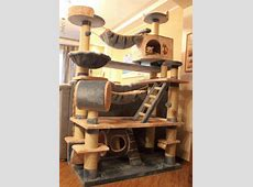 Best 25+ Cat gym ideas on Pinterest Cat scratching tree