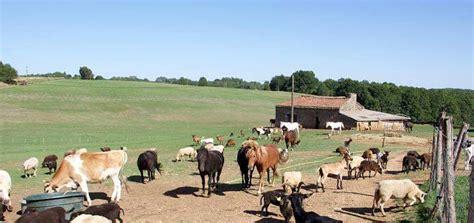 canape leclerc la ferme des rescapes animaux à l 39 adoption