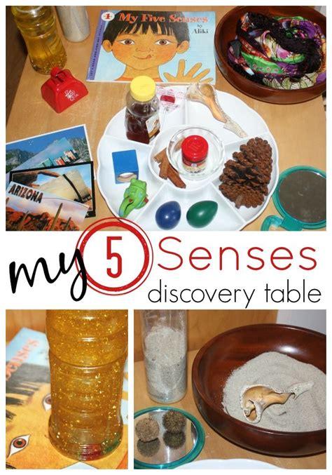 table activities for preschoolers 160 best images about 5 senses preschool theme on