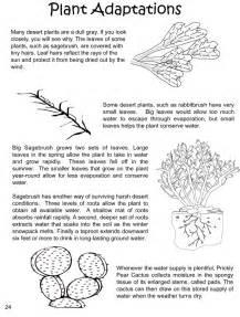 Plant Adaptations Worksheet