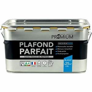 Peinture Pour Plafond : quelle peinture pour plafond guide complet ~ Melissatoandfro.com Idées de Décoration