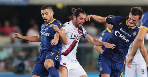 Прямая трансляция матча верона и болонья. Verona-Bologna, le pagelle del Corriere di Bologna - Tutto ...