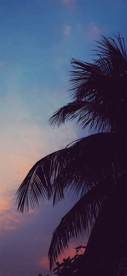 Chill Vibes Wallpapers Iphone Backgrounds Phone Aesthetic