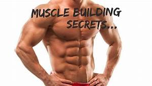 50 Muscle Building Tips   Everything You Need To Know About Adding Mass