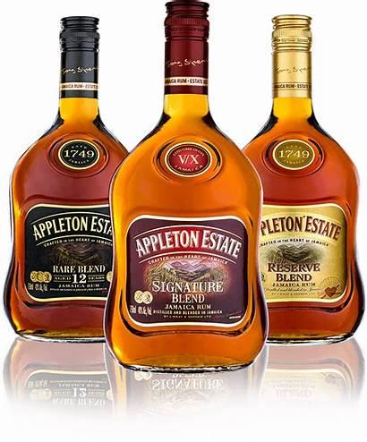 Appleton Estate Bottles Rum Jamaica Jamaican Beaches