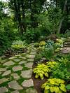 Traditional Landscape Ideas, Designs, Remodels & Photos shade garden path ideas